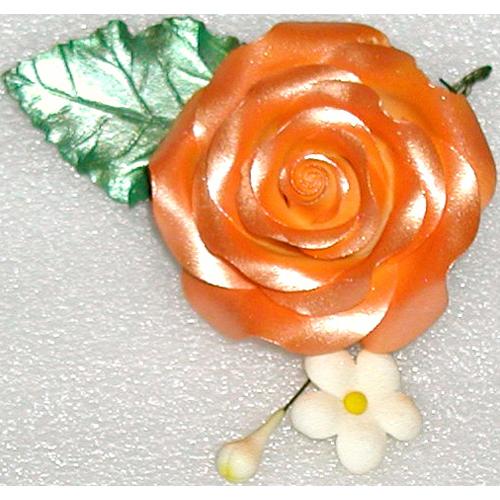 Orange SheenFlower