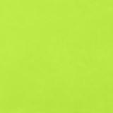 Satin Ice 2 Lbs Fondant  Vanilla Flavor  - Bright Green